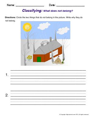Preview image for worksheet with title Classifying: What doesn't belong?