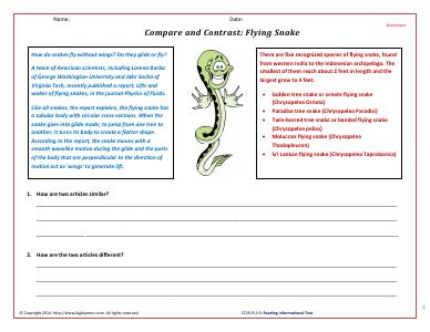 Preview image for worksheet with title Compare and Contrast: Flying Snake
