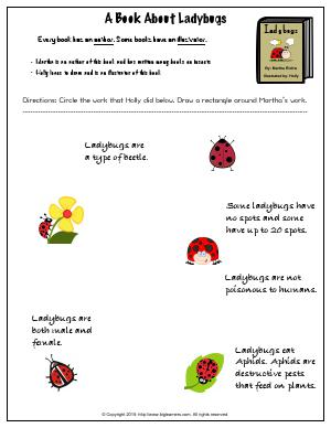 Preview image for worksheet with title A Book About Ladybugs