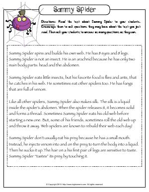 Preview image for worksheet with title Sammy Spider