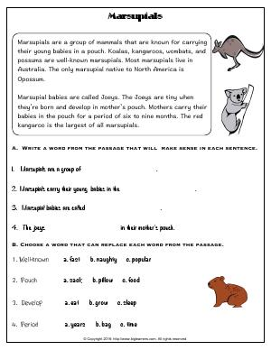 Preview image for worksheet with title Marsupials