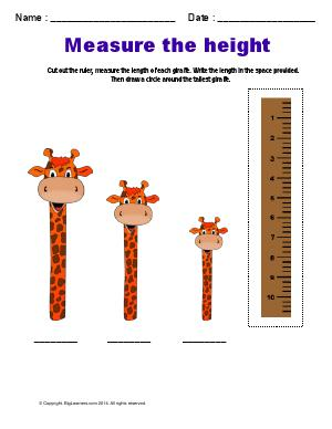 Preview image for worksheet with title Measure the Height